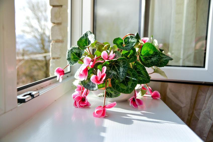 Miért érdemes műanyag ablakpárkány mellett dönteni?
